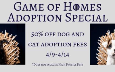 Game of Homes Adoption Specials