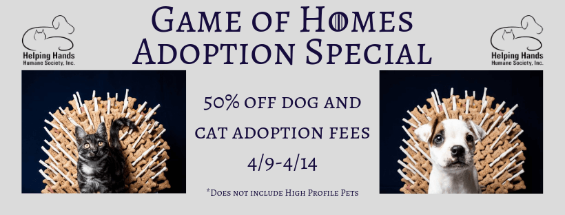 Game of Homes Adoption Specials