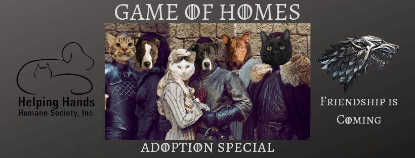 Game of Homes Adoption Specials Continue