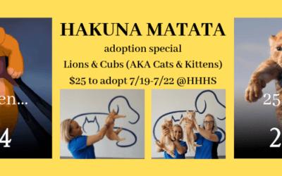Hakuna Matata Adoption Special